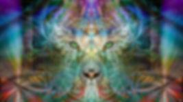 SinhaRainbowWarriorPreview-1024x576.jpg