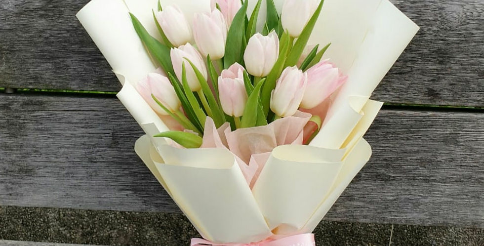(T01) Pink - Tulips