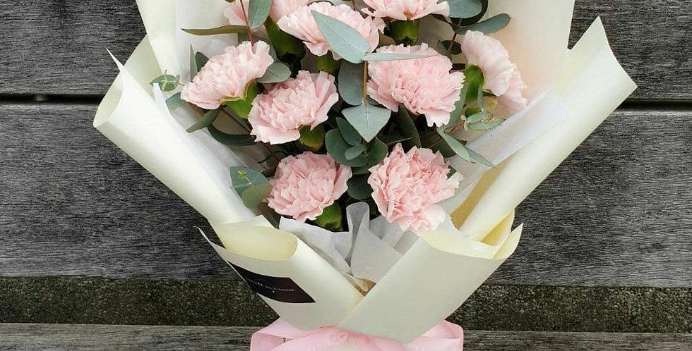 (C05) Tender - Pink Carnation