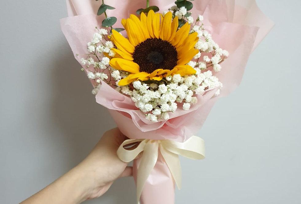 (SF05) Philia - Sunflower