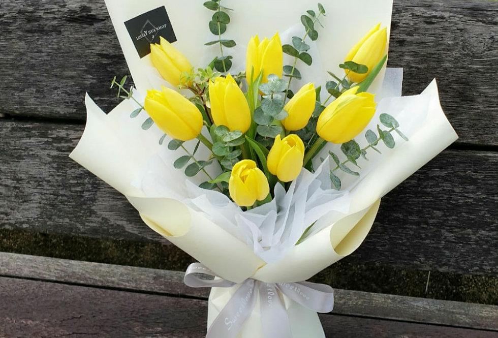 (T05) Yellow - Tulips