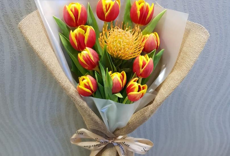 (T02) Red - Tulips