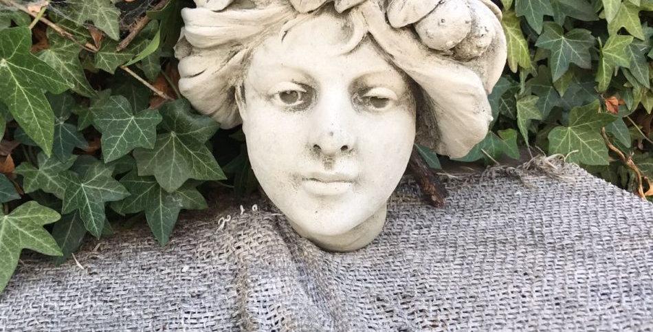 LADY FACE PLANTER