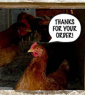chicken_thanks.jpg