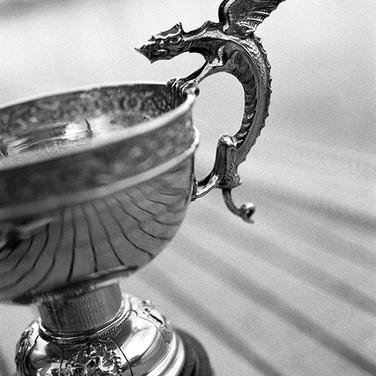 DRAGON GOLD CUP, MEDEMBLIK