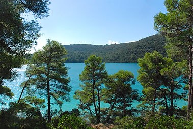 Joy of the Mediterranean, Mljet, Yoga Retreats, Wellbeing Retreats
