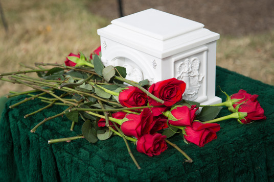 Roses with Urn.JPG