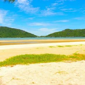 ไปเที่ยวชายหาดที่ไหนดี อัพเดท ชายหาด ที่คนส่วนใหญ่สนใจเที่ยวกัน | เที่ยวไหนดี
