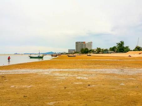 อัพเดท ชายหาด ที่คนส่วนใหญ่สนใจเที่ยวกัน   เที่ยวไหนดี เที่ยวหาดไหนดี