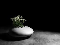 stoner planter
