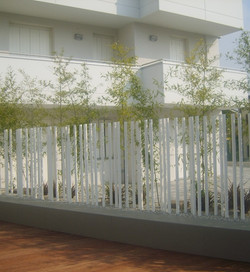 bamboo 3.jpg
