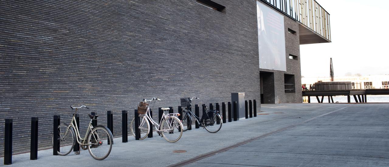 316_bike_sun_header_b.jpg