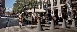 chicane barrier