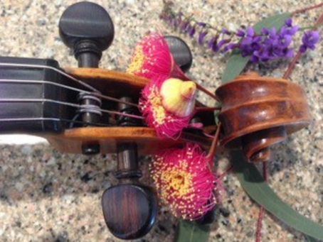 Join the Australia-New Zealand viola email group!