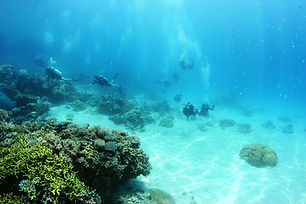 571744-divers.jpg