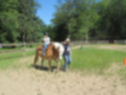 horse+(11).jpg