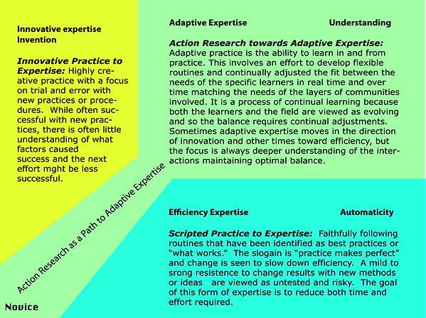 adaptiveexpertisepath.jpg