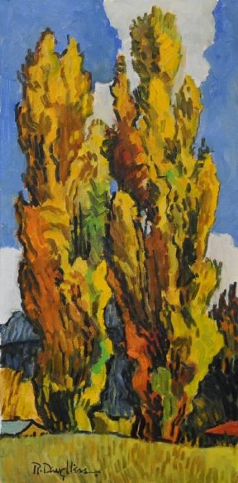 Mountain Poplars