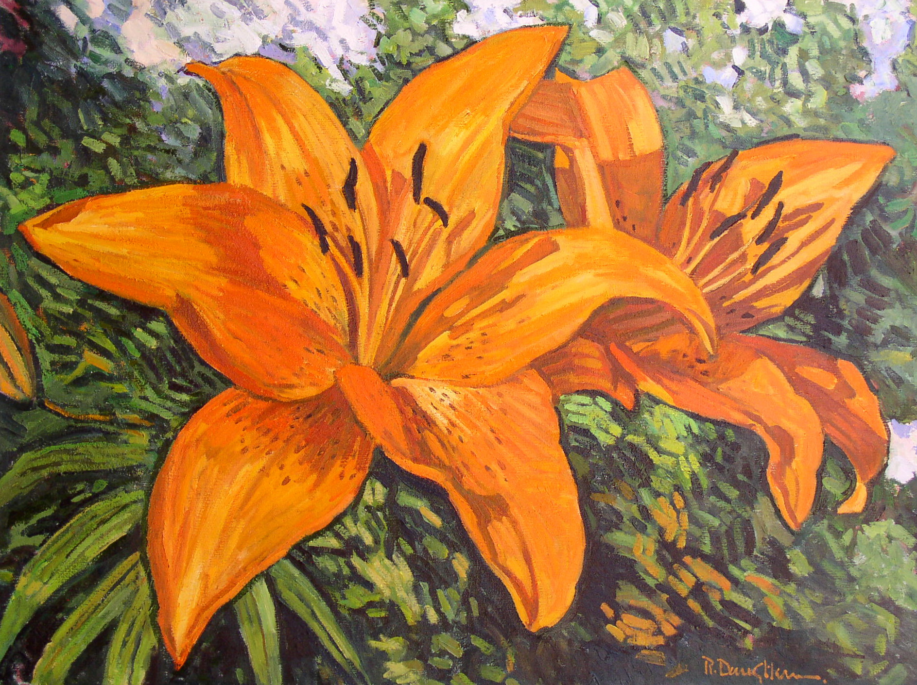 Two Day Lilies