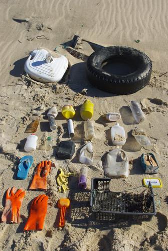 lixo marinho variado