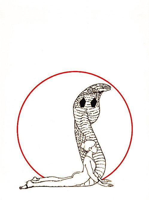 Les cobras
