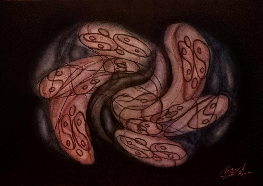 Tao - Le poumon de l'univers