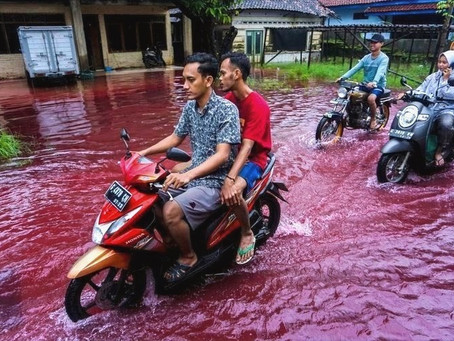 Floods in Indonesia Turn Water Red!