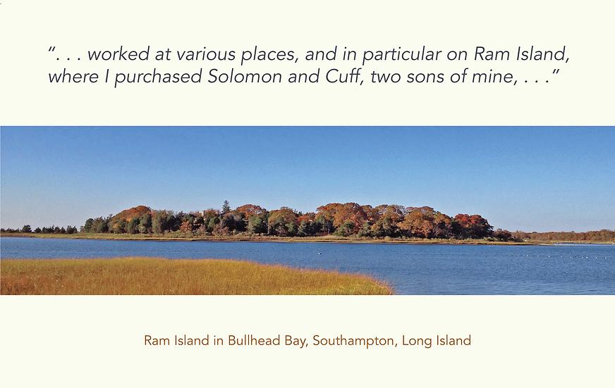 MF-VS 27-2-21 - 16 Ram Island copy.png