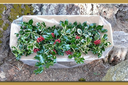 Boxed Mixed Holly