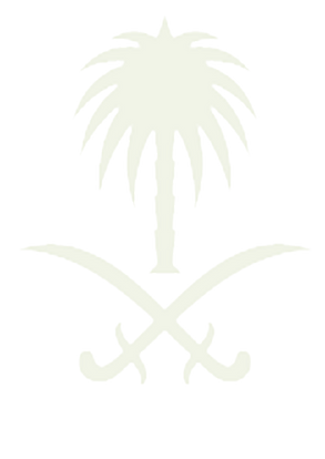 palm-removebg-preview (1).png