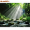 Thumbnail: RUOPOTY Framed DIY Painting by Numbers Landscape Kit Acrylic Paint on Canvas
