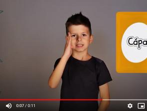 Cápa, kapcsolatok, iskola: ezek voltak a kedvenc Jeleven online videók