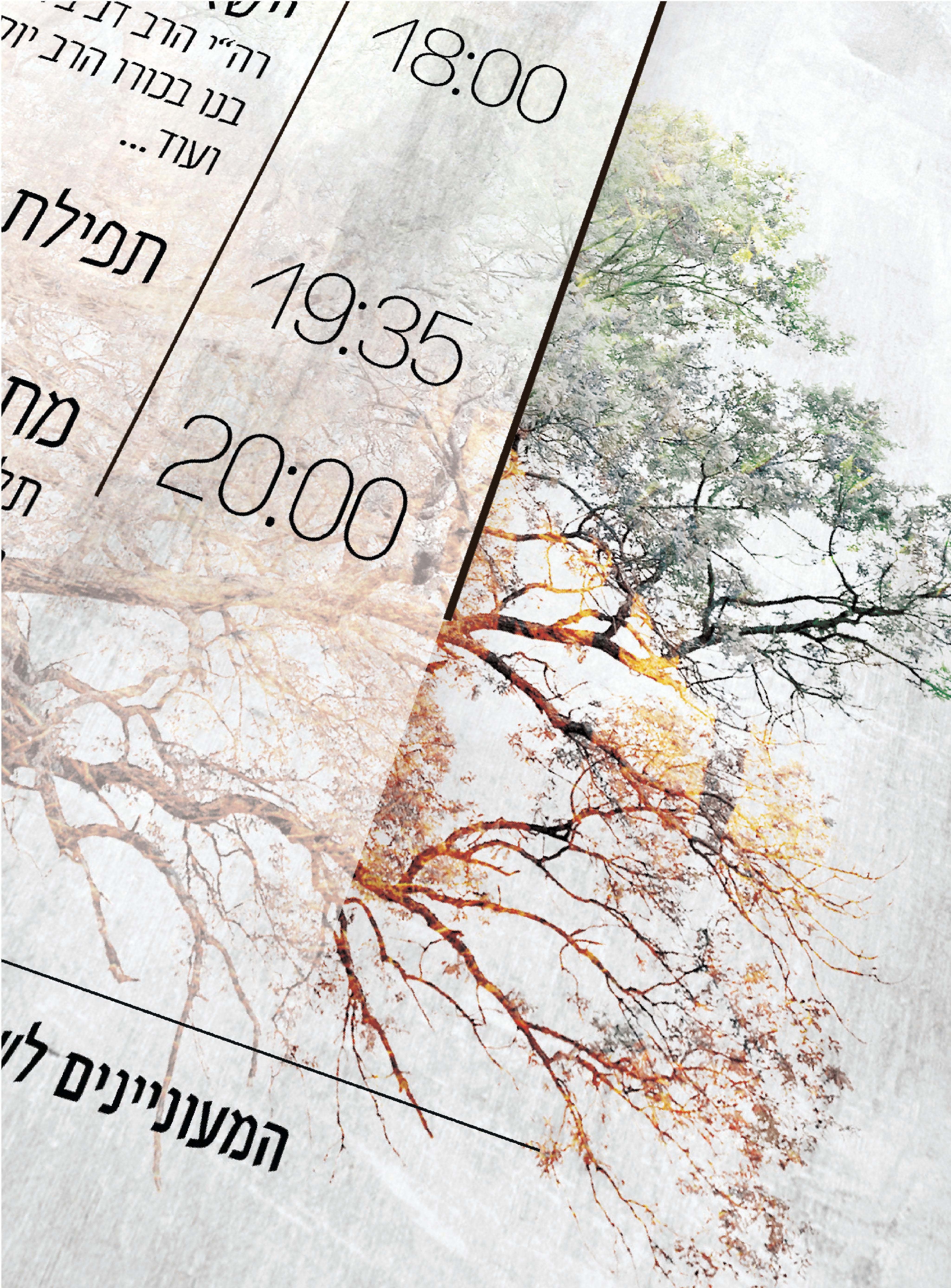 הרב יאיר אוריאלב