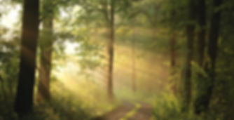 Inanna Sanctuary Brand Background Image