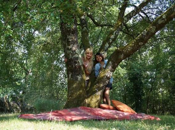 The guardian tree.jpg