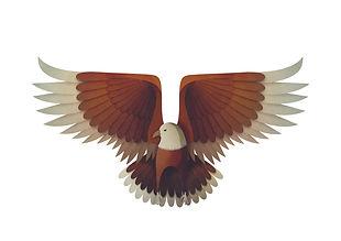 eagle_strong.jpg