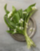 GarlicChives_StillLife.jpg