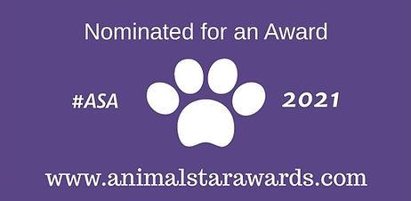 Animal Star Awards.jpg