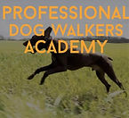 Professional Dog Walkers.jpg