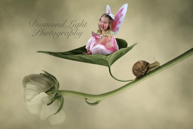 DiamondLightPhoto1.jpg