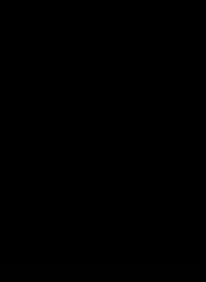 P_possehl-online-solutions_Logo-schwarz.