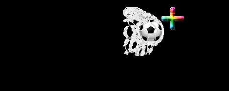 Logo real IBR.png
