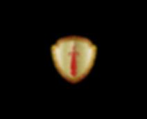 shield orginal New-01.png