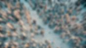 Northstar Drone-3.jpg