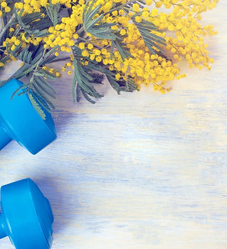 Dumbbells%20and%20branches%20of%20mimosa