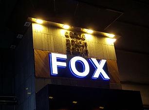 fox 432.jpg