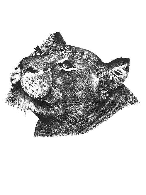Lioness daisy chain Print