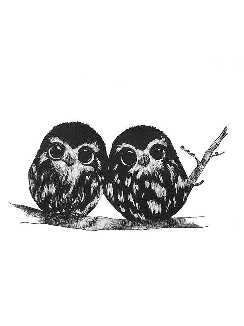 Owlets Print