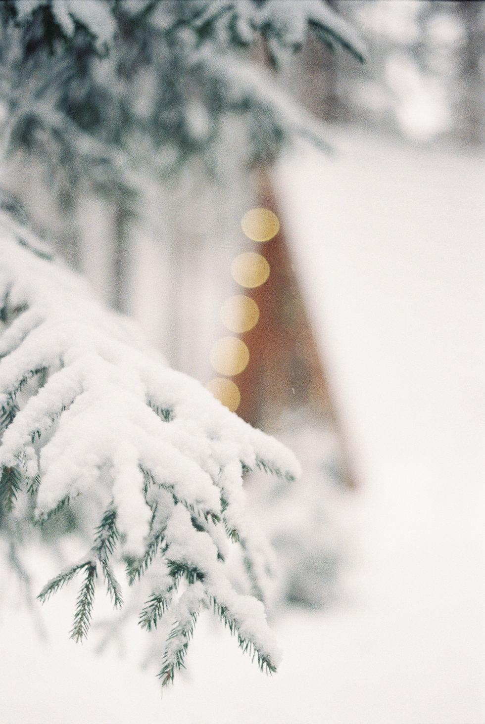 snow nice.jpg