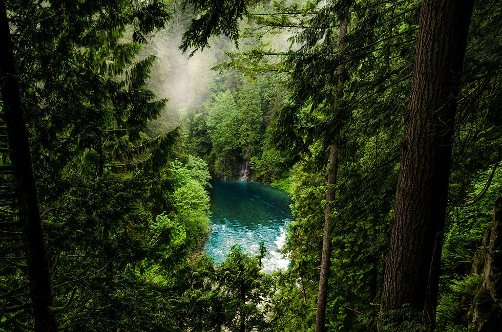 quarry blue water green trees .jpg